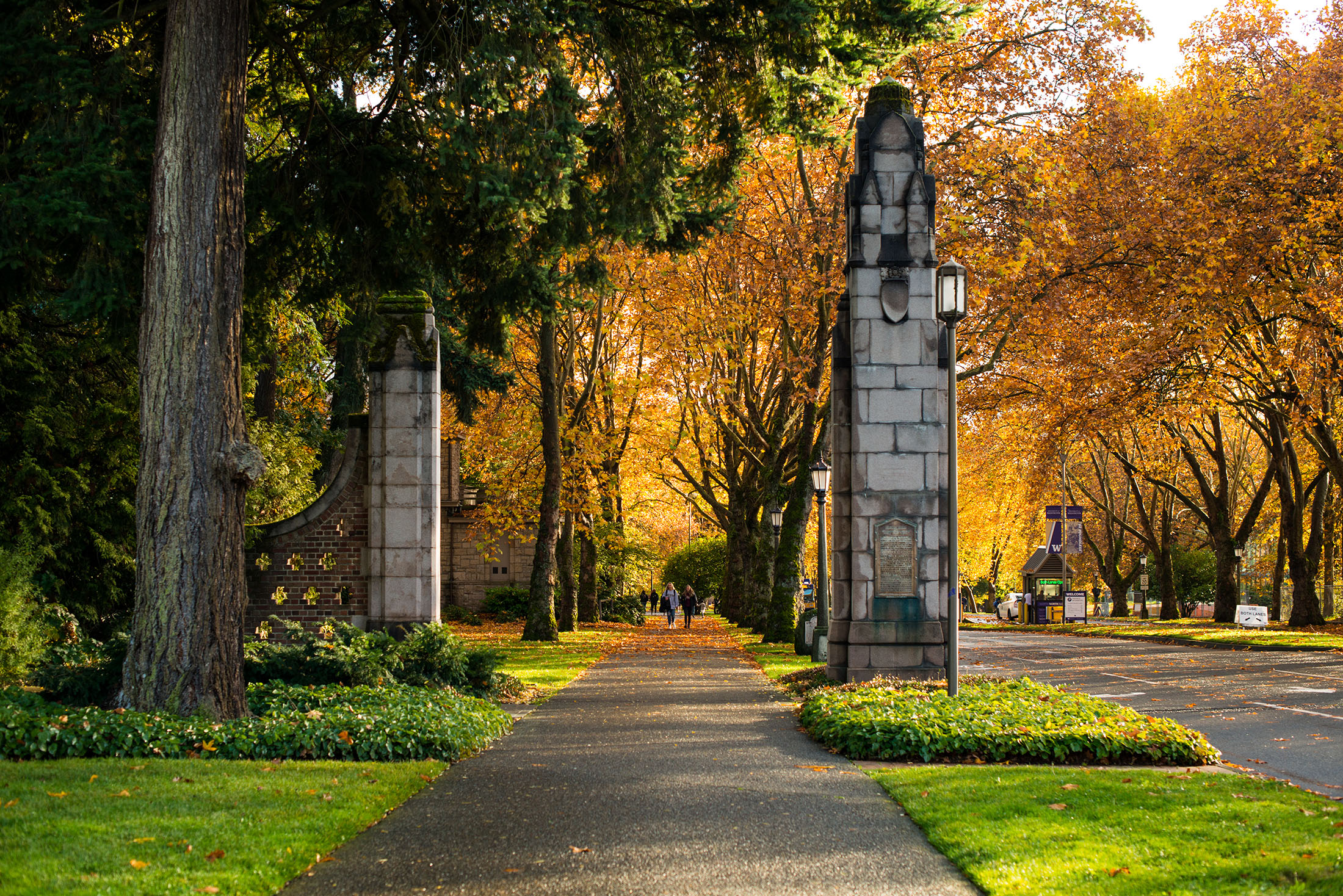 MEMORIAL WAY, Lined with 58 London plane trees commemorating those who died in WWI, Memorial Way is a majestic entrance to campus.