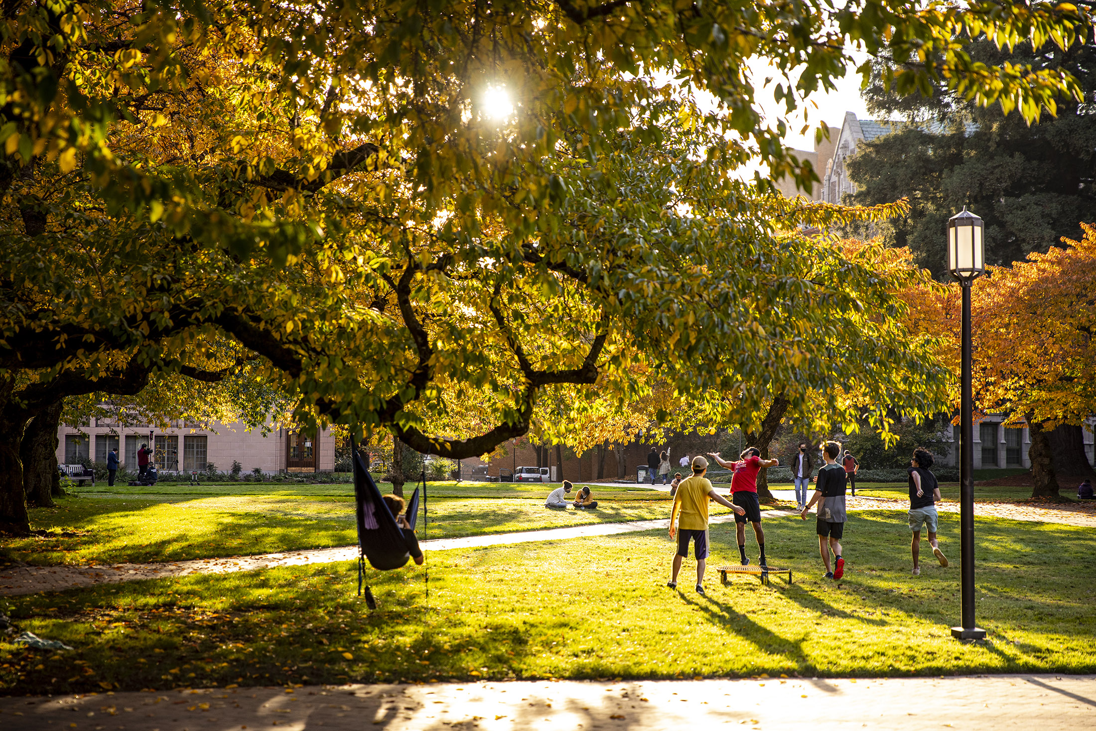 THE QUAD, In the fall and spring, it's the perfect place to relax or play.