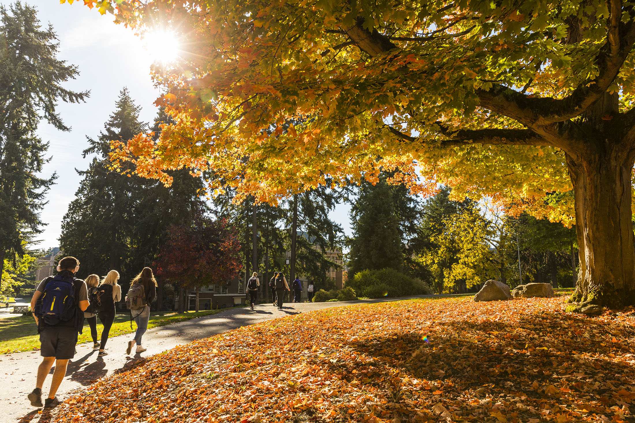 #2 MOST BEAUTIFUL CAMPUS IN AUTUMN, — Best College Reviews, 2021
