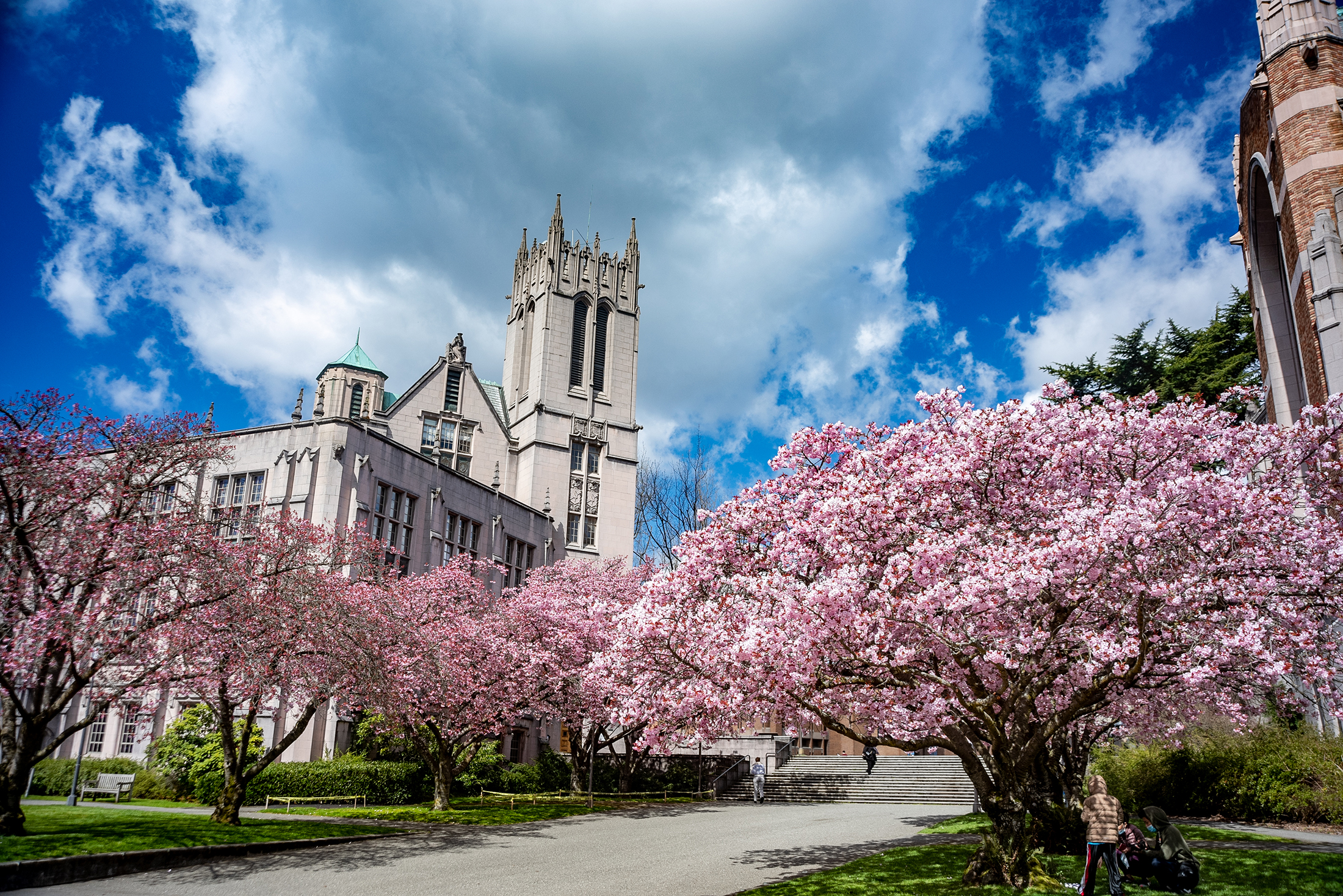 """""""This campus should be on a postcard."""", 8 Most Beautiful College Campuses in the U.S.A. — Travel & Leisure, 2018"""